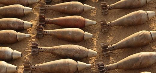 20-bombi