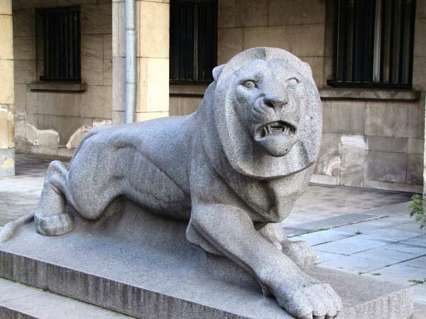 09-Lion_MVR