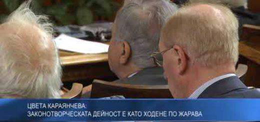 Цвета Караянчева: Законотворческата дейност е като ходене по жарава