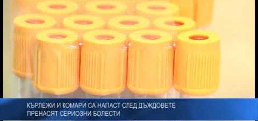 Кърлежи и комари са напаст след дъждовете – пренасят сериозни болести