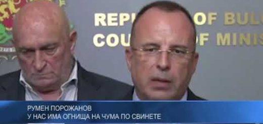 Румен Порожанов: У нас има огнища на чума по свинете