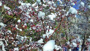 Зимата в Астана започва в средата на октомври
