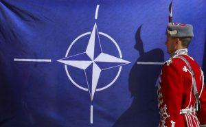 NATO-BG