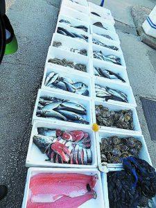 Морски дарове от Адриетическо море и... не само