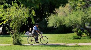 хора-улици-парк-колело