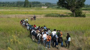 Syrian refugees walk through a field near the village of Idomeni at the Greek-Macedonian border, July 14, 2015. The United Nations refugee agency said that Greece urgently needed help to cope with 1,000 migrants arriving each day and called on the European Union (EU) to step in before the humanitarian situation deteriorates further. More than 77,000 people have arrived by sea to Greece so far this year, more than 60 percent of them Syrians, with others fleeing Afghanistan, Iraq, Eritrea and Somalia, it said. REUTERS/Alexandros Avramidis