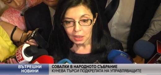 Совалки в НС – Кунева търси подкрепата на управляващите