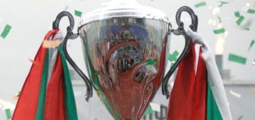 kupa bulgaria futbol