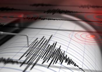 Трима души са ранени след земетресение край Япония