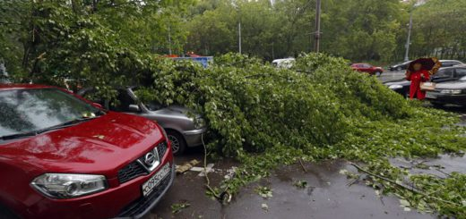 Aftermath of thunderstorm in Moscow