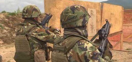 Специалните сили в атака
