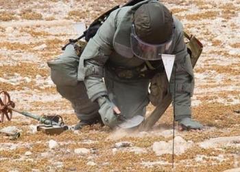 Сапьори унищожиха 10 вехти гранати, открити в селска къща край В. Търново