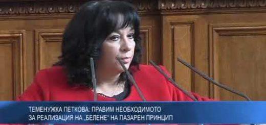"""Теменужка Петкова: Правим необходимото за реализация на """"Белене"""" на пазарен принцип"""