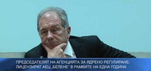 """Председателят на Агенцията за ядрено регулиране: Лицензират АЕЦ """"Белене"""" в рамките на една година"""