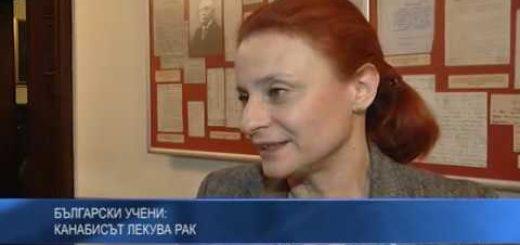 Български учени: Канабисът лекува рак