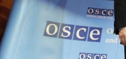 Организацията за сигурност и сътрудничество в Европа (ОССЕ)