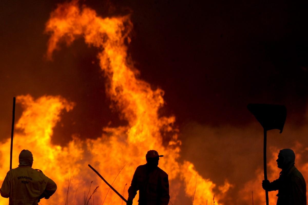 Горските пожари в Турция се разрастват