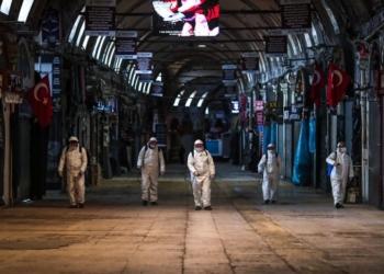 Вирус, причиняващ западнонилска треска, е установен в Истанбул