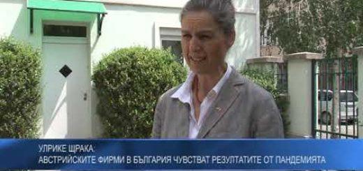 Улрике Щрака: Австрийските фирми в България чувстват резултатите от пандемията