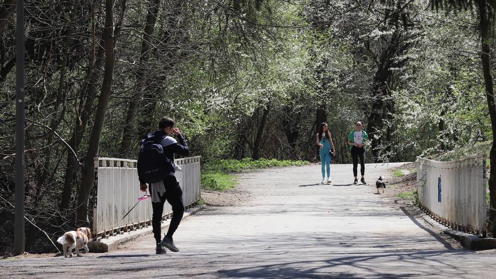 Парковете в София се обработват срещу кърлежи