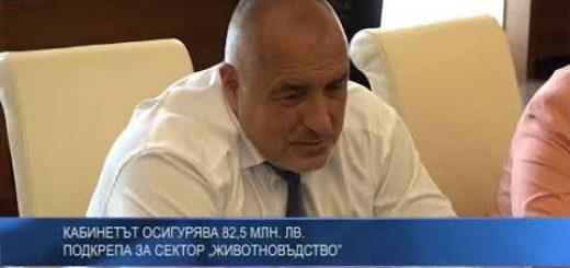 """Кабинетът осигурява 82,5 млн. лв. подкрепа за сектор """"Животновъдство"""""""