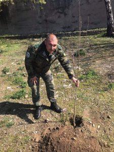 залесяват около паметника на 23 Пехотен Шипченски полк