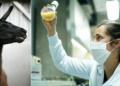 Антителата на лама притъпяват Covid вариантите в лабораторно изпитване, твърди белгийски стартъп