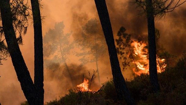 Инцидент в Гърция: Пожар в бежански лагер на остров Самос