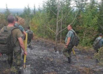 Военнослужещи от Сухопътните войски участват в действията по окончателно ликвидиране на пожара край хисарското село Черничево
