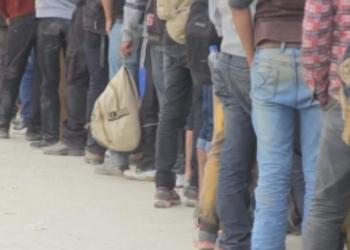 Германската полиция е обезпокоена от растящия брой незаконни мигранти от Беларус
